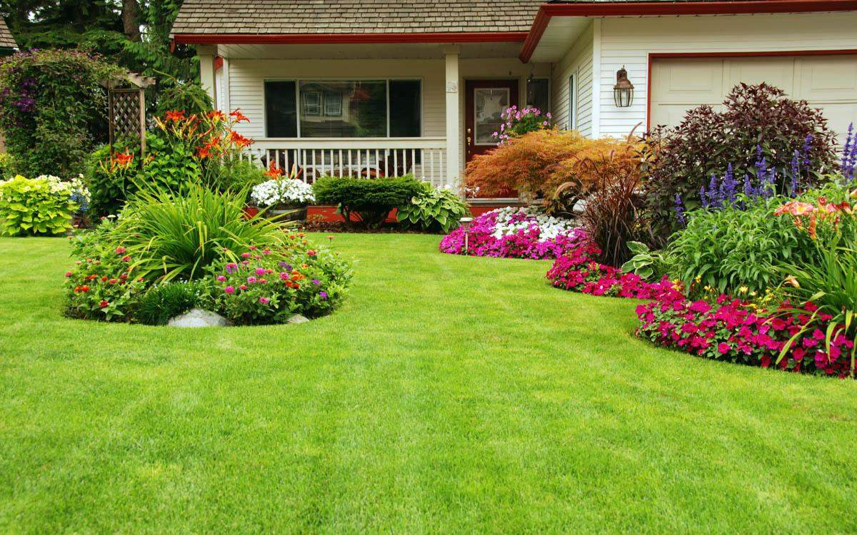 10 Best Landscaping Ideas In The Rio Grande Valley Cityof Com