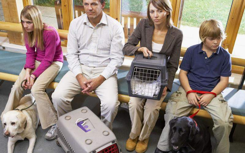 Pet owners in waiting room
