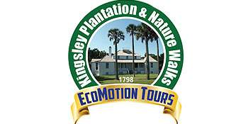 EcoMotion Tours