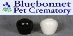 Pet Cremations In San Antonio Tx