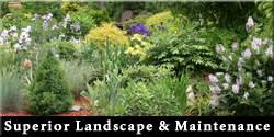 Superior Landscape & Maintenance