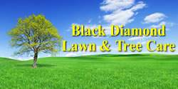 Black Diamond Lawn & Tree Care