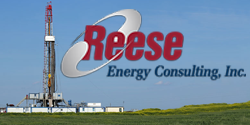 Reese Energy Consulting, Inc.