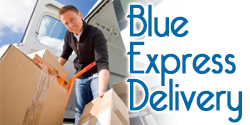 Blue Express Delivery
