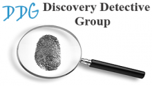 Discovery Detective Group